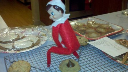 elf cookie